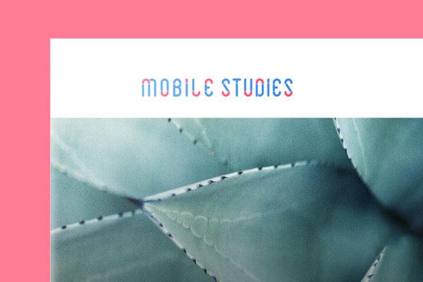 Design Portfolio Leow Hou Teng - Mobile Studies Learning Management System - Logo